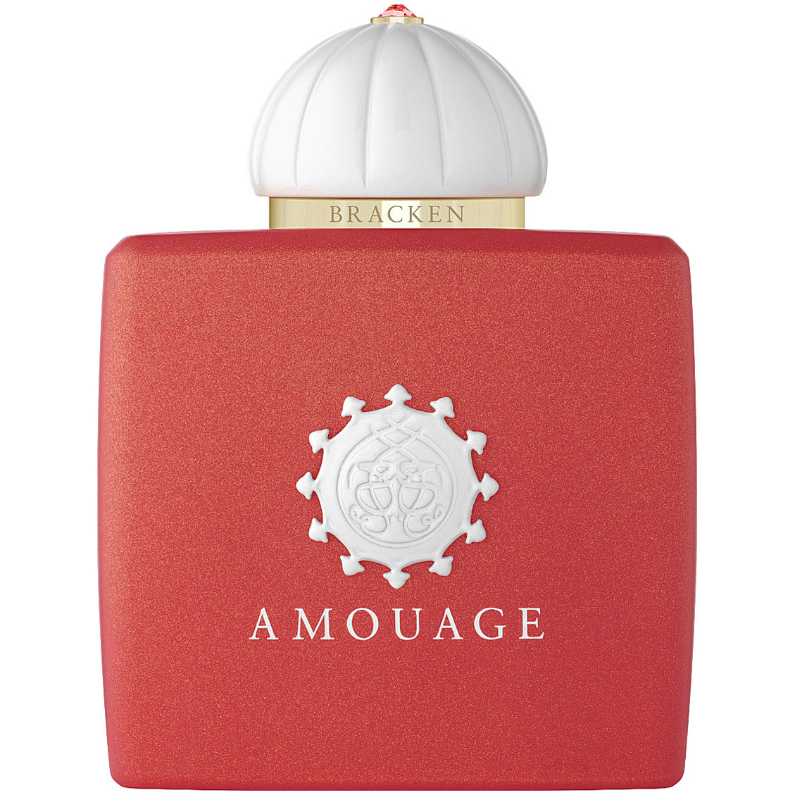 Afbeelding van Amouage Bracken Woman 100 ml eau de parfum spray