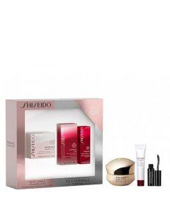 Shiseido Benefiance WrinkleResist 24 Oogset