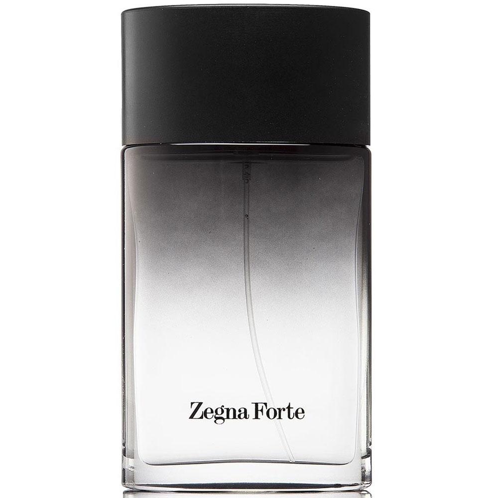Afbeelding van Ermenegildo Zegna Forte 100 ml eau de toilette spray
