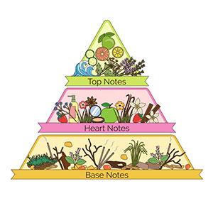 Geurpyramide